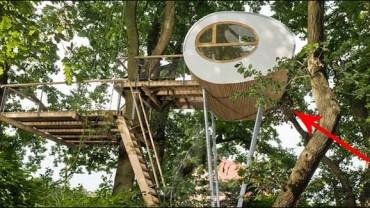 Ten domek na drzewie przywołuje marzenia z dzieciństwa.