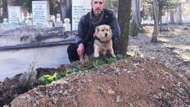 Kundelek nie odstępował na krok trumny zmarłego właściciela. Po pogrzebie zrobił coś jeszcze smutniejszego