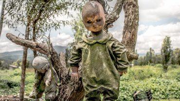 Wyspa lalek  w Meksyku, to jedno z najstraszniejszych miejsc świata! Z drzew krzewów i pajęczyn zwisają tu setki marionetek, które ludzie wieszają w jednym, przerażającym celu