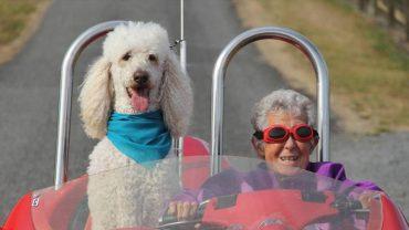 Staruszka zrezygnowała z chemioterapii, by wyruszyć w podróż marzeń. Zamiast cierpieć, postanowiła wycisnąć z życia wszystkie soki