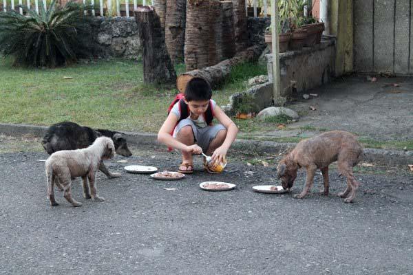 Ojciec znalazł syna karmiącego bezpańskie psy. Kilka miesięcy później... zbudowali coś fantastycznego.