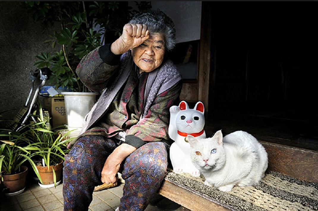Japonka zaadaptowała bezpańskiego kota. Teraz są nierozłączni!