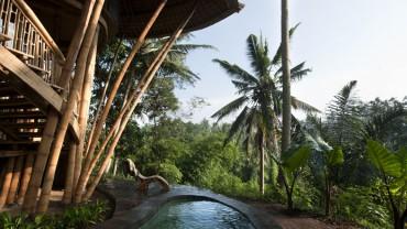 Piękne zdjęcia domów w dżungli na Bali, zgadnijcie, z czego są wykonane!