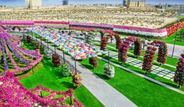 Miracle Garden – miejsce, które nie powinno istnieć!