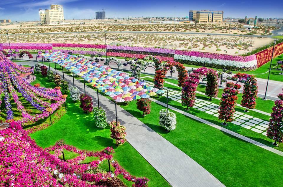 Miracle Garden - miejsce, które nie powinno istnieć!