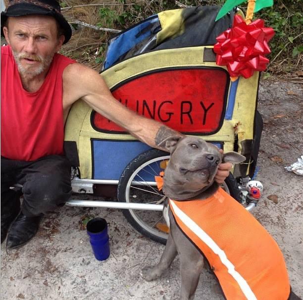 Porwali jego ukochanego psa. Zobacz, jak zakończyła się ta historia!