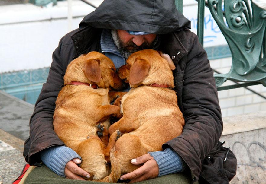 Psi przyjaciel - zawsze będzie cię kochał, bez względu na to ile masz pieniędzy...