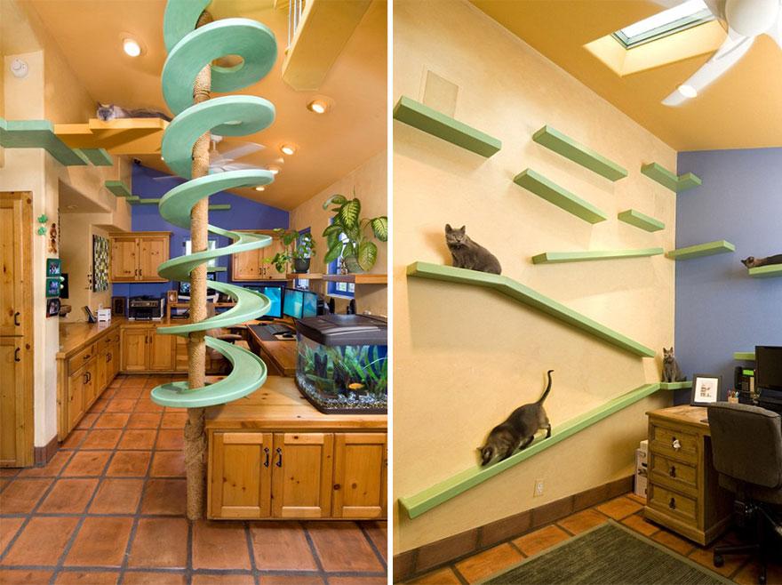 Przyjazny dom dla kota - zainspiruj się!