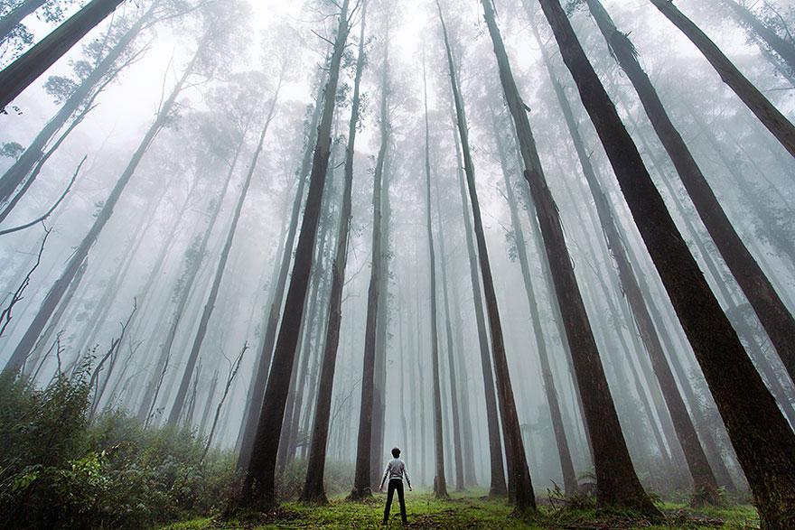 26 zdjęć prezentujących ludzi obcujących z naturą. Naprawdę zapierają dech!