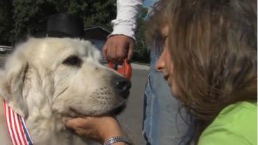Ten pies został wybrany burmistrzem małego miasteczka w Minnesocie