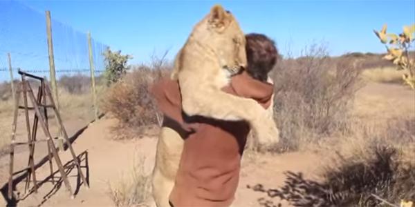 To, co zrobił z tym lwem, jest nie do pomyślenia... ale stało się faktem!