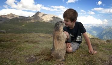 Normalnie te zwierzęta straszą ludzi, ale ten młody chłopiec znajduje na nie sposób! :)