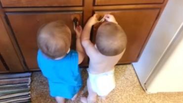 Jeśli dźwięk niemowlęcego śmiechu wywołuje uśmiech na Twojej twarzy, pokochasz to video!