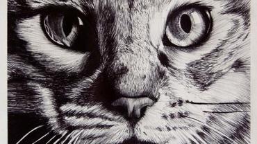 Cudowne obrazki narysowane… długopisem!