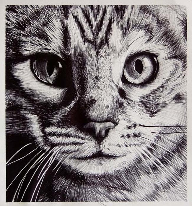 Cudowne obrazki narysowane... długopisem!