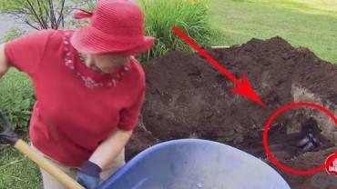 Kiedy zobaczyłem, co zakopuje ta kobieta, przecierałem oczy ze zdziwienia…