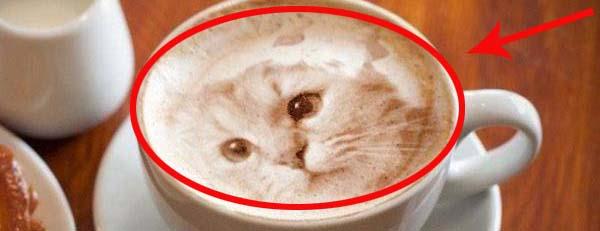 Te kawy są tak piękne, że aż szkoda je pić:)