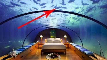 Te hotele musisz odwiedzić przed śmiercią! Są niesamowite!