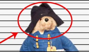 Te pluszaki chcą odnaleźć swój dom! Może znajdziecie swojego zaginionego pluszaka?