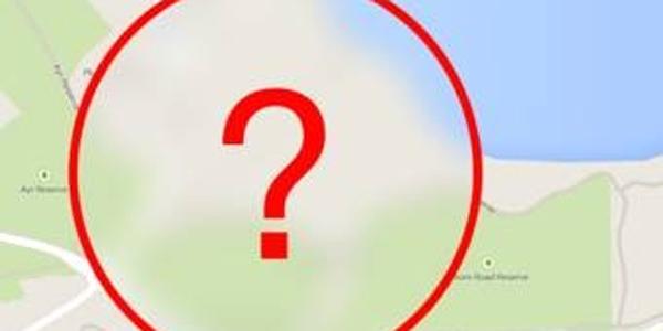 Gigantyczny kot właśnie pojawił się w Google Maps. Nikt nie wie, jak się tam znalazł!