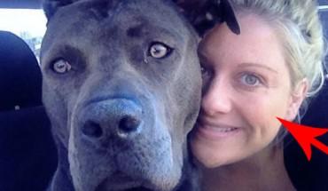 Ta kobieta uratowała pitbulla, ale nikt nie powiedział jej o tym, jakie mogą być tego konsekwencje…