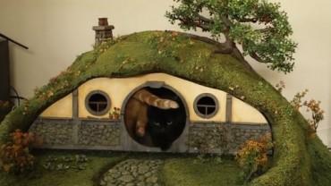Nietypowe zastosowanie dla nory Hobbita.