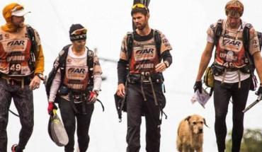Bezpański pies podążał za sportowcami setki kilometrów! Nie mogę uwierzyć w to, co zobaczyłam!