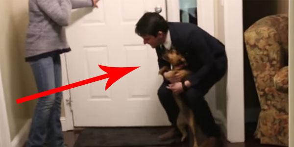 Ten mężczyzna po dwóch latach nieobecności wrócił do domu. Niezwykła reakcja jego psa wprawiła mnie w osłupienie. WOW!