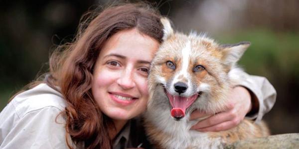 Poznaj Todda uroczego liska, który myśli, że jest psem!