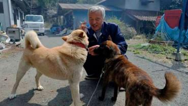 """Naraża własne zdrowie i życie, żeby nieść pomoc potrzebującym zwierzętom. Poznaj historię """"Strażnika zwierząt Fukushimy""""."""
