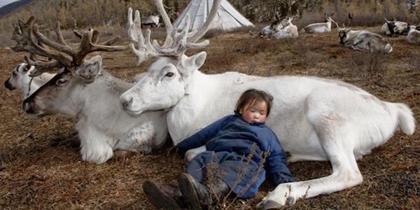 Poznaj jedno z ostatnich plemion mongolskich nomadów. Ci ludzie niezmiennie od wieków żyją w zgodzie z naturą!