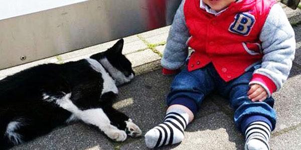 Ten kot z minuty na minutę zyskuje coraz więcej fanów na Facebooku! Dlaczego? Zobaczcie, jaki jest wyjątkowy!