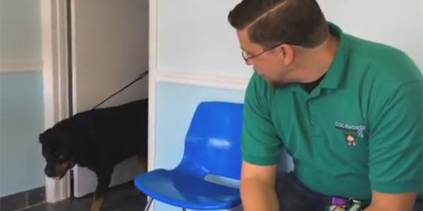 Ten mężczyzna był przekonany, że stracił ukochanego psa na zawsze. Los przygotował dla niego małą niespodziankę
