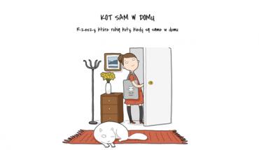 Co robi kot w pustym mieszkaniu?