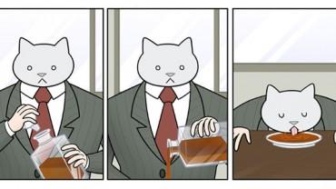 Jak wyglądałaby twoja praca, gdyby twój szef był… kotem?