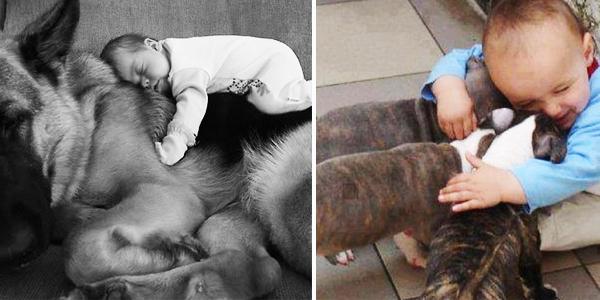 20 dowodów na to, że każde dziecko potrzebuje zwierzaka. Trudno się nie wzruszyć oglądając te fotografie!
