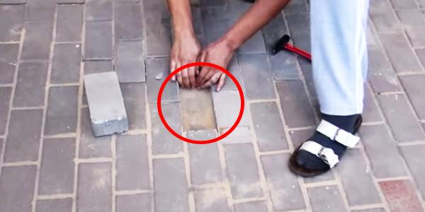 Robotnicy zamurowali pod klatką schodową psa! Takie rzeczy tylko w Rosji!