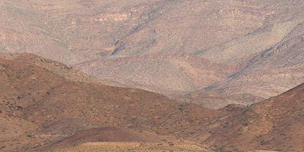 Co się stanie, gdy na pustynie spadnie deszcz?