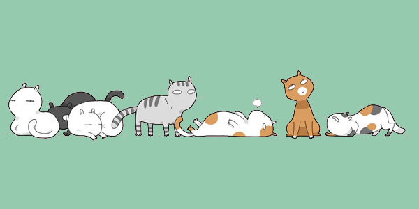 12 typów kotów, które mogą zamieszkać pod twoim dachem