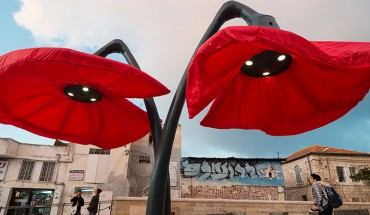 Pojawienie się czerwonych kwiatów w centrum miasta nadało mu oryginalnego charakteru…
