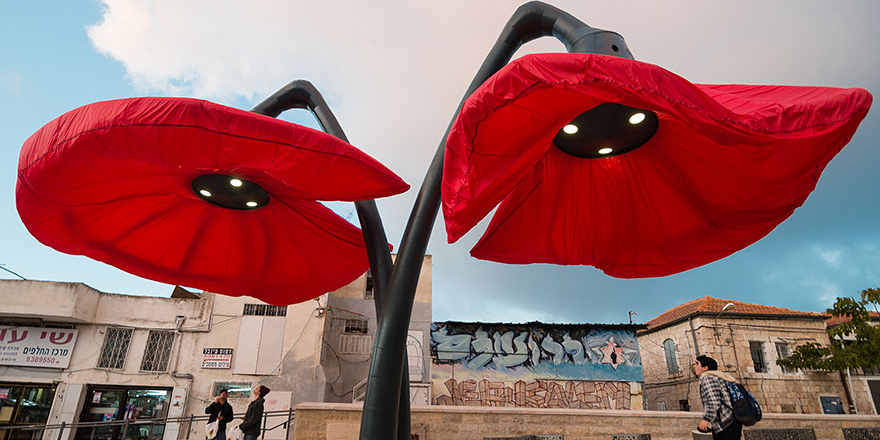 Pojawienie się czerwonych kwiatów w centrum miasta nadało mu oryginalnego charakteru...