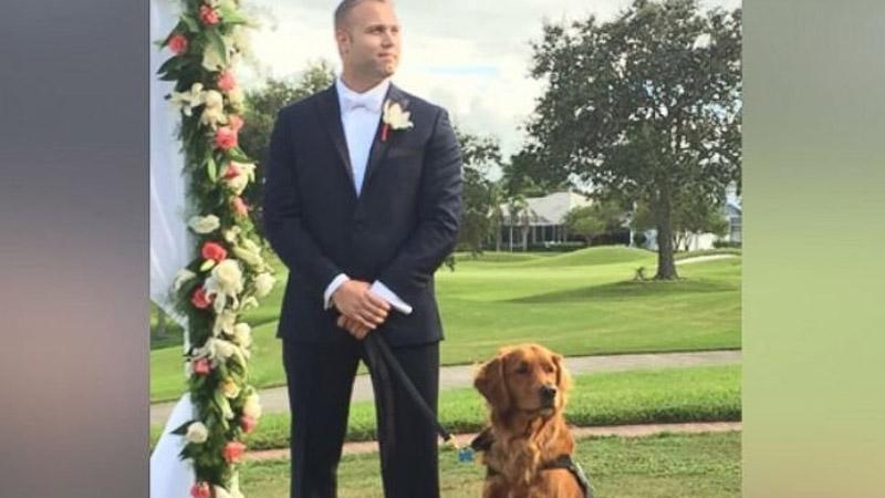 Przyjaźń z psem uratowała mu życie. Teraz mężczyzna postanowił się odwdzięczyć zwierzakowi!