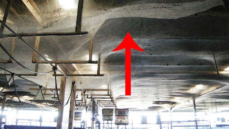 Ludzie pracowali w tym miejscu przez kilka lat! Pewnego razu ktoś spojrzał w górę i zobaczył TO!!!