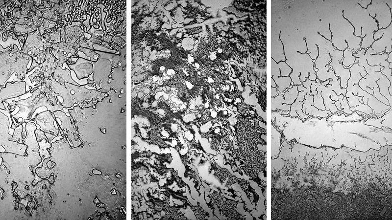 Kiedy zobaczysz łzy pod mikroskopem, zrozumiesz, jaką potęgę mają uczucia!