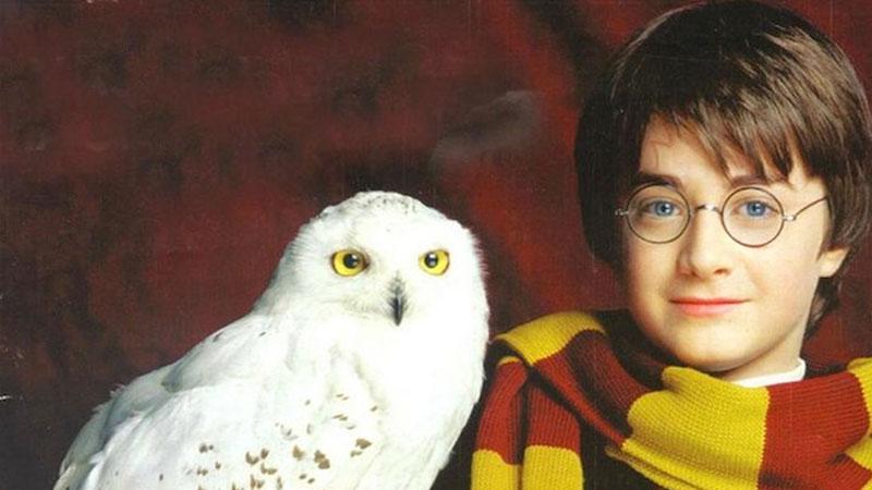 Harry Potter powraca! Czy jesteście gotowi na ósmą część jego magicznych przygód?