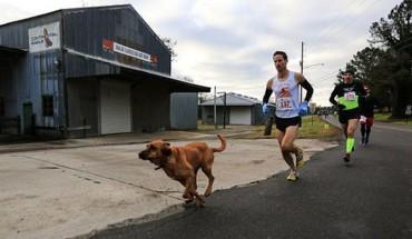 Niezwykły zawodnik maratonu w Elkmont (Alabama).  Zobacz, kto niespodziewanie dołączył do biegaczy