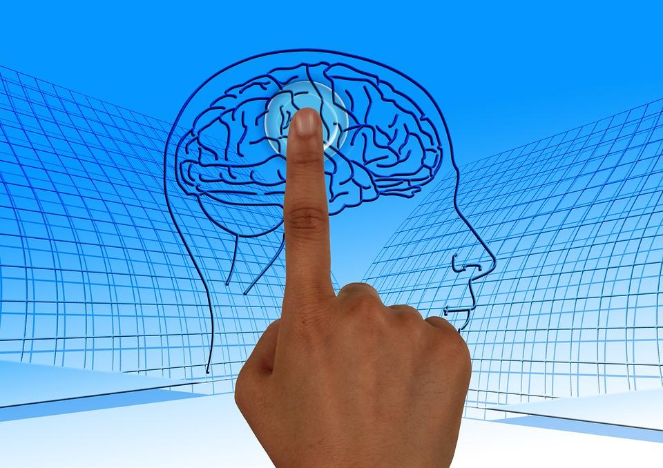 brain-770044_960_720