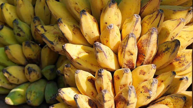 bananas-504478_960_720