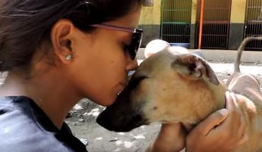 Bezpański pies umierał z głodu na ulicy. Na szczęście ludzie dobrego serca, pospieszyli mu z pomocą