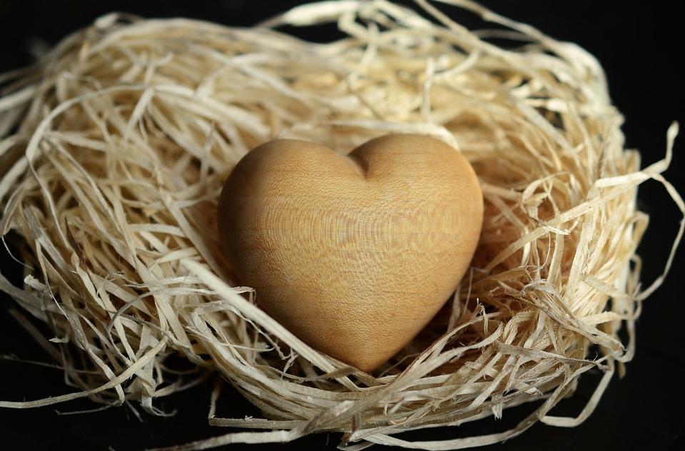 wood-wool-1186917_960_720